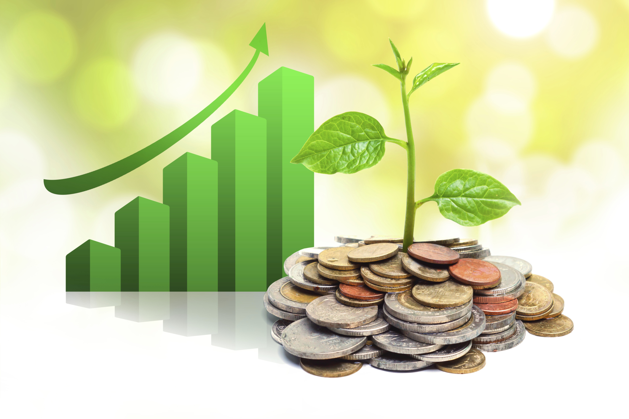 how to build assets under manamgenet