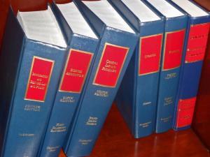 law-books-4-300x225
